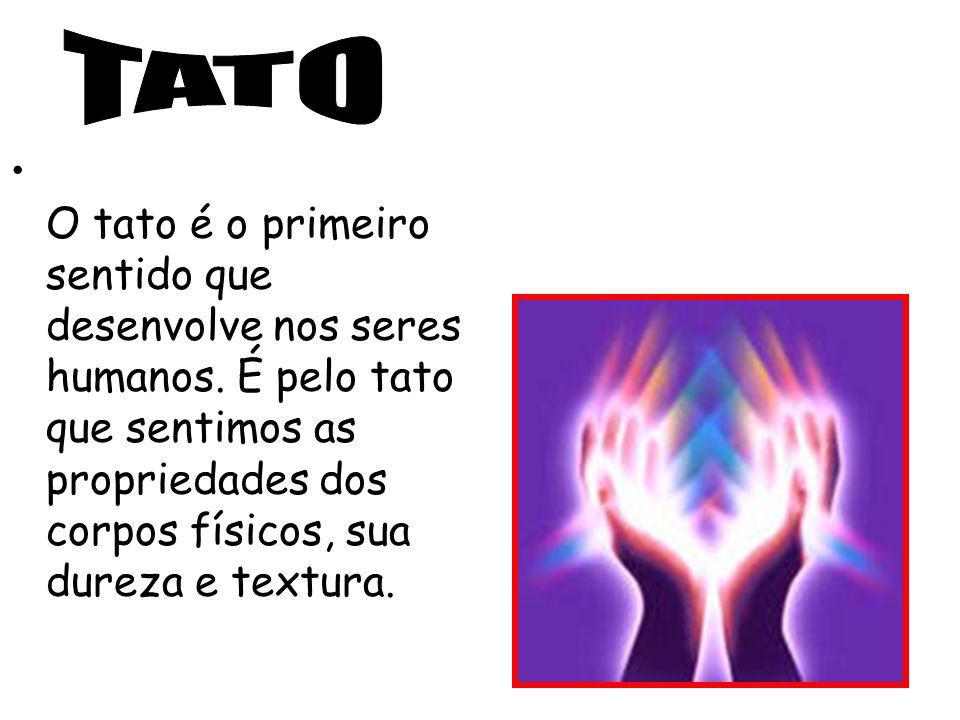 TATO O tato é o primeiro sentido que desenvolve nos seres humanos.