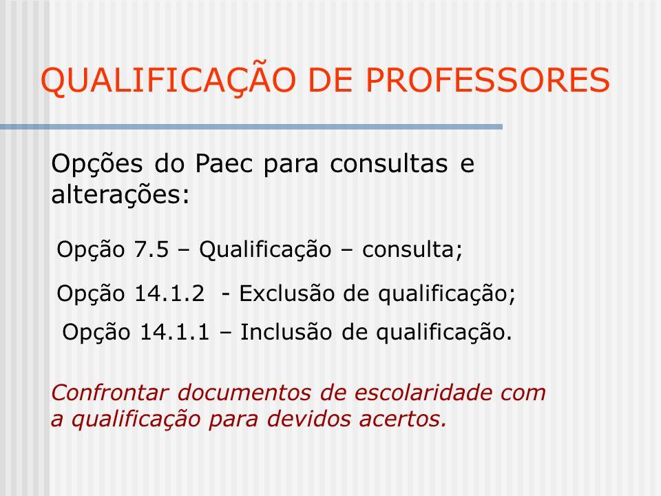 QUALIFICAÇÃO DE PROFESSORES