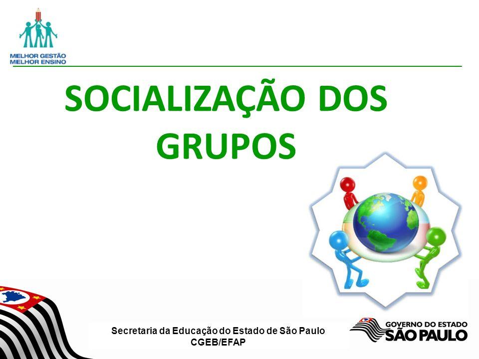 SOCIALIZAÇÃO DOS GRUPOS