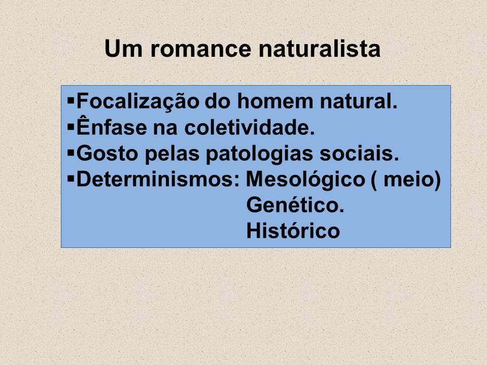 Um romance naturalista