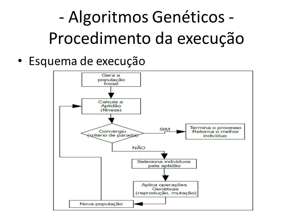 - Algoritmos Genéticos - Procedimento da execução