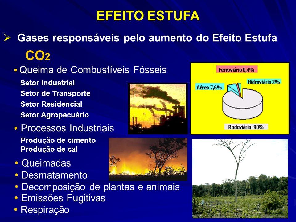 EFEITO ESTUFA CO2 Gases responsáveis pelo aumento do Efeito Estufa