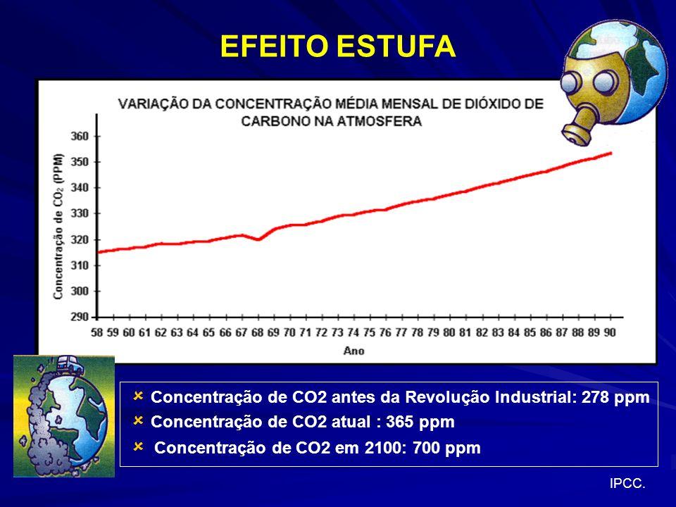 EFEITO ESTUFA  Concentração de CO2 antes da Revolução Industrial: 278 ppm.  Concentração de CO2 atual : 365 ppm.