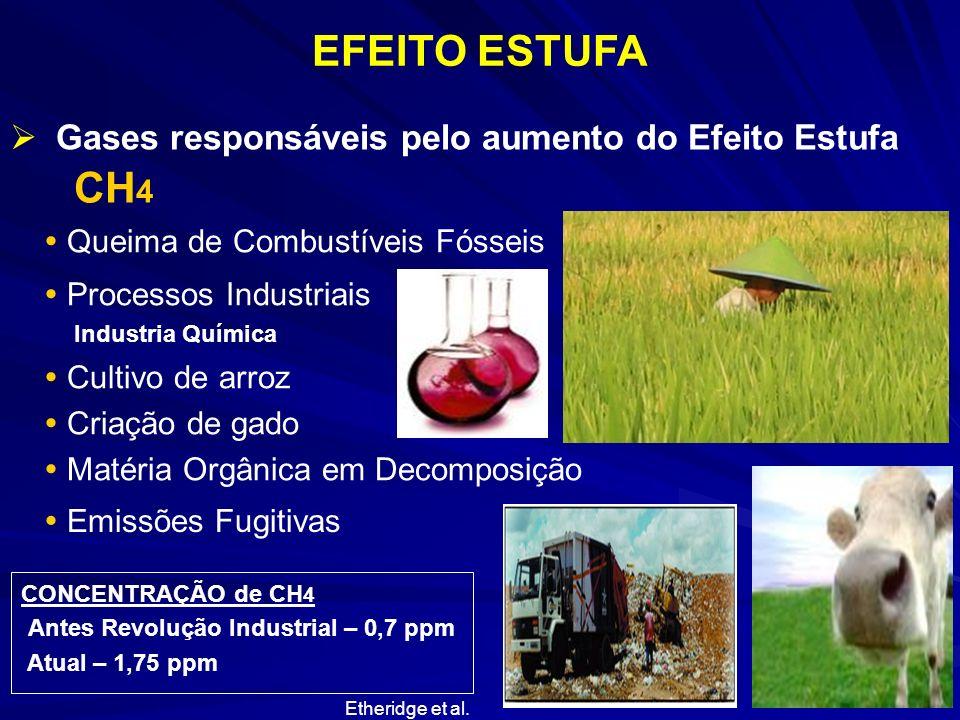 EFEITO ESTUFA CH4 Gases responsáveis pelo aumento do Efeito Estufa
