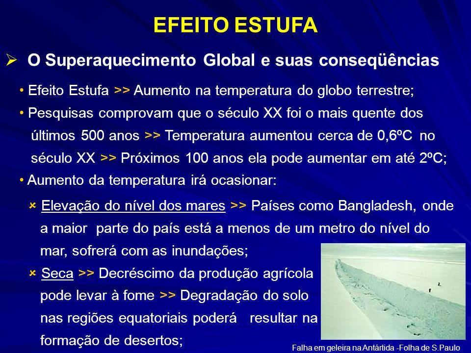 EFEITO ESTUFA O Superaquecimento Global e suas conseqüências