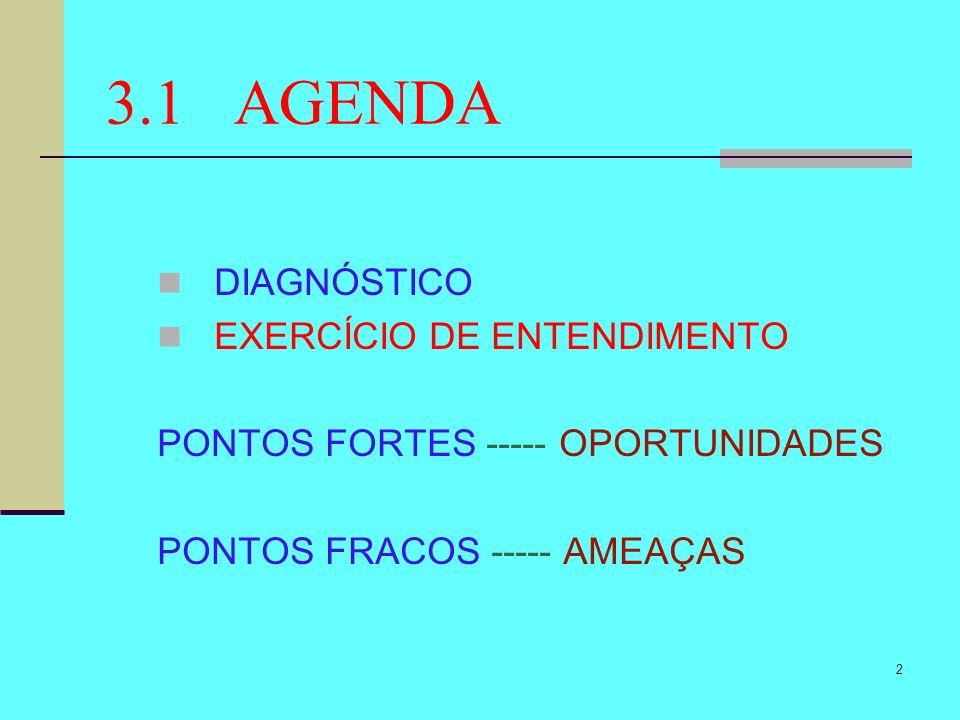 3.1 AGENDA DIAGNÓSTICO EXERCÍCIO DE ENTENDIMENTO