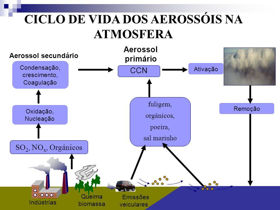 CICLO DE VIDA DOS AEROSSÓIS NA ATMOSFERA