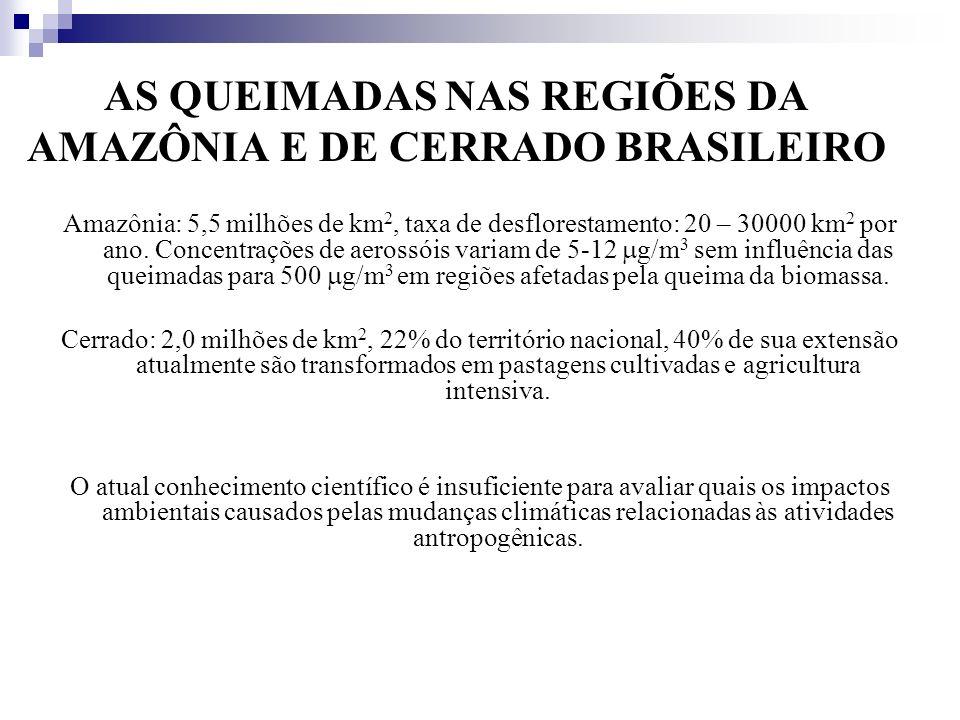 AS QUEIMADAS NAS REGIÕES DA AMAZÔNIA E DE CERRADO BRASILEIRO