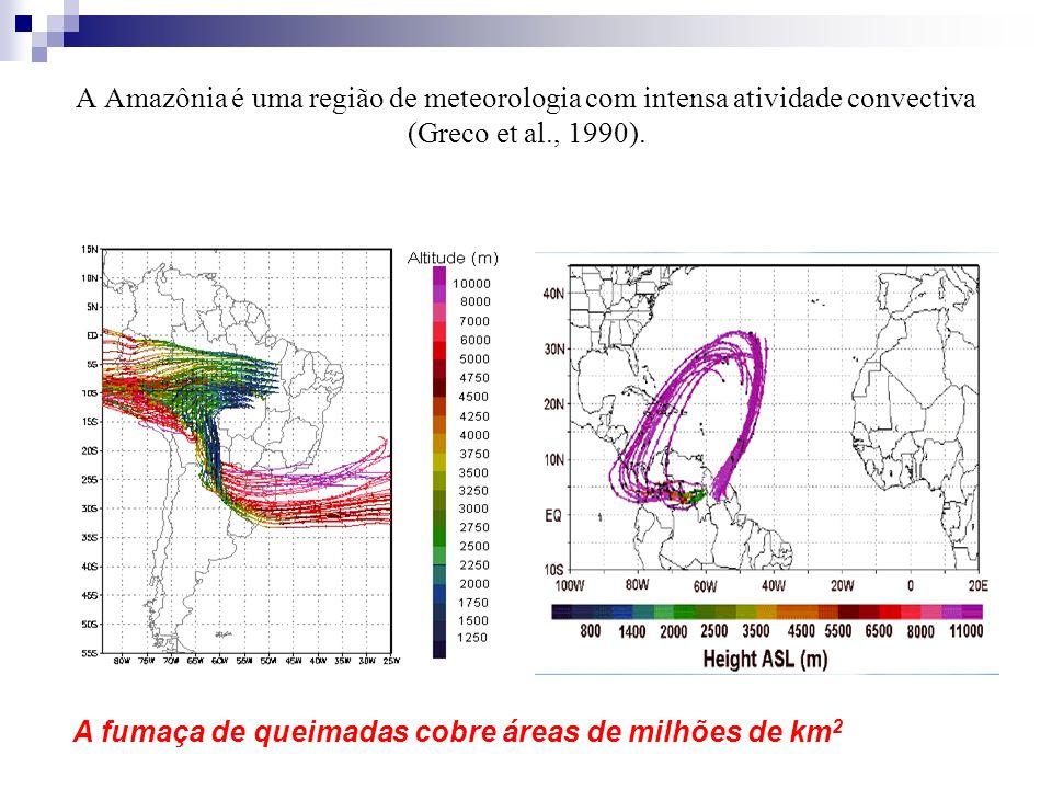 A Amazônia é uma região de meteorologia com intensa atividade convectiva (Greco et al., 1990).