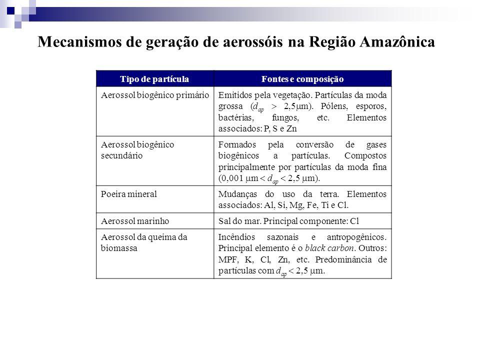 Mecanismos de geração de aerossóis na Região Amazônica