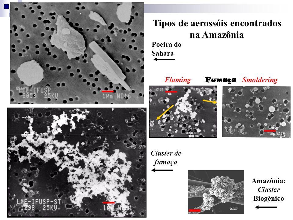 Tipos de aerossóis encontrados na Amazônia
