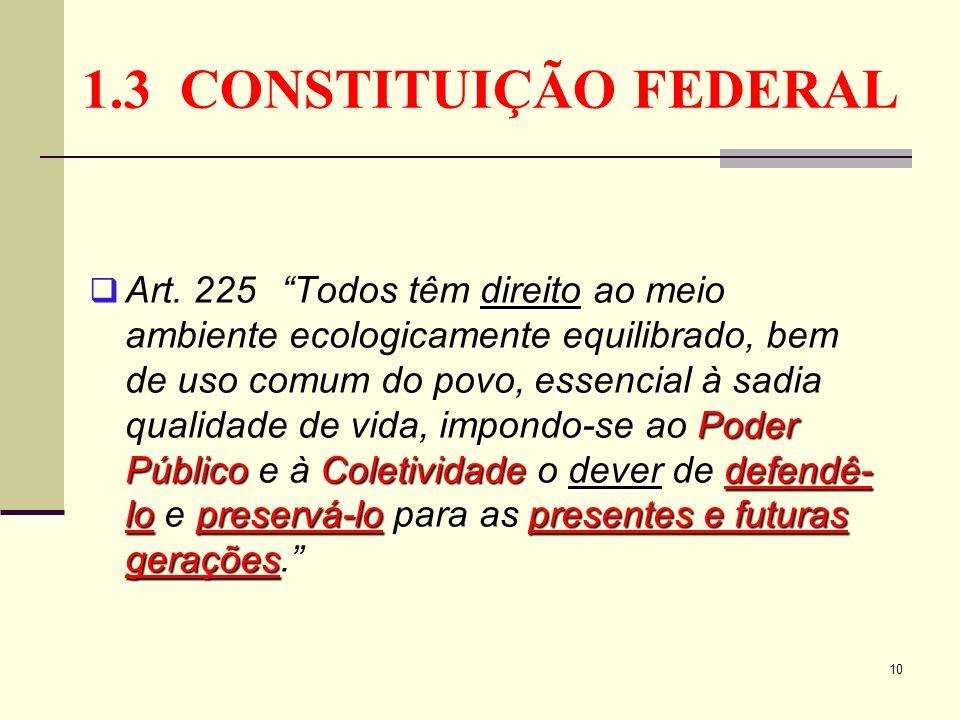 1.3 CONSTITUIÇÃO FEDERAL