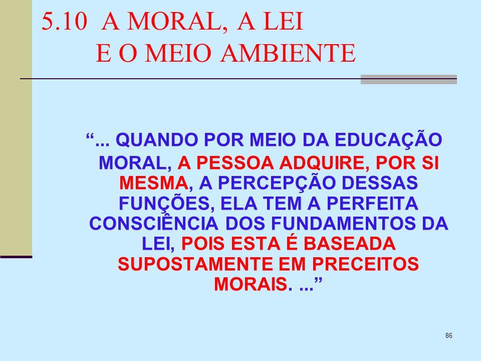 5.10 A MORAL, A LEI E O MEIO AMBIENTE