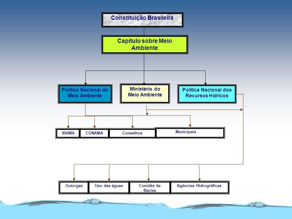 Constituição Brasileira Capítulo sobre Meio Ambiente