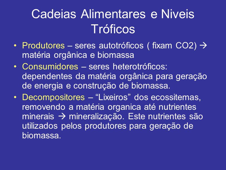 Cadeias Alimentares e Niveis Tróficos