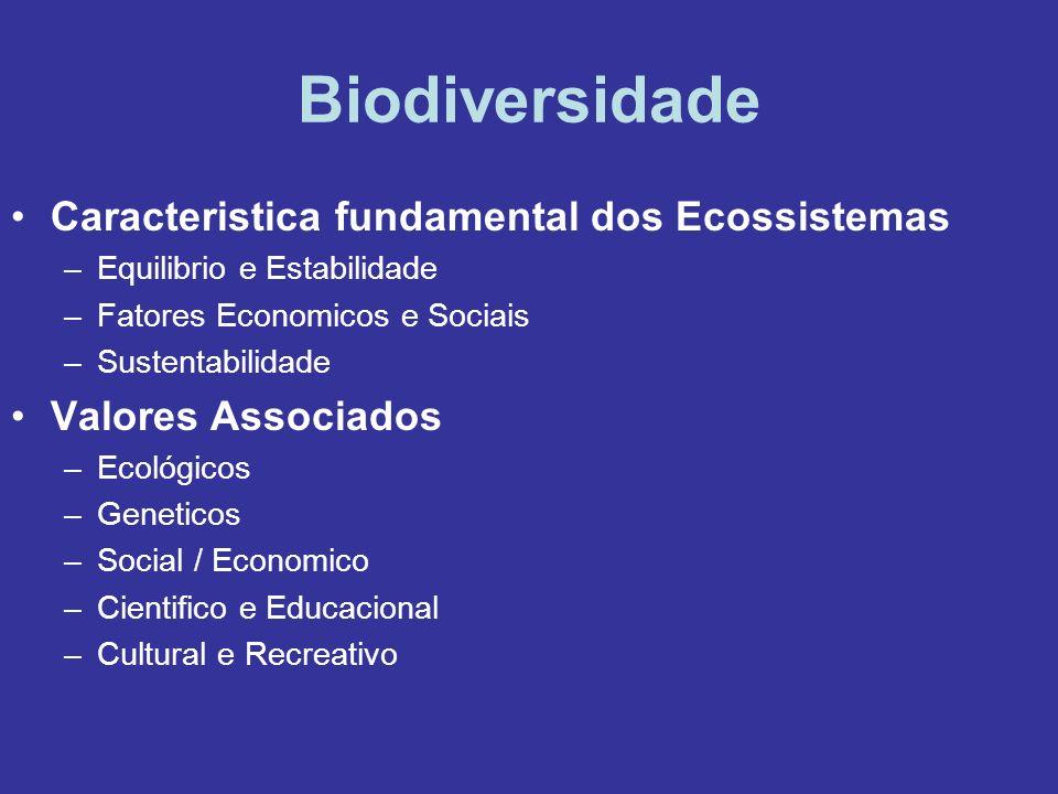 Biodiversidade Caracteristica fundamental dos Ecossistemas