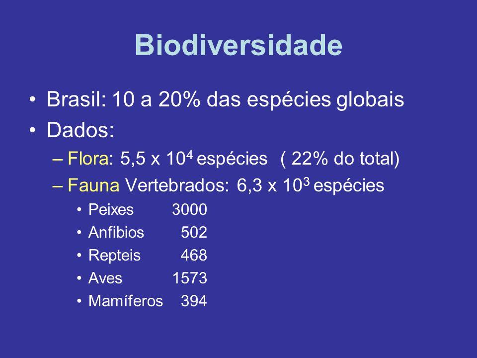 Biodiversidade Brasil: 10 a 20% das espécies globais Dados: