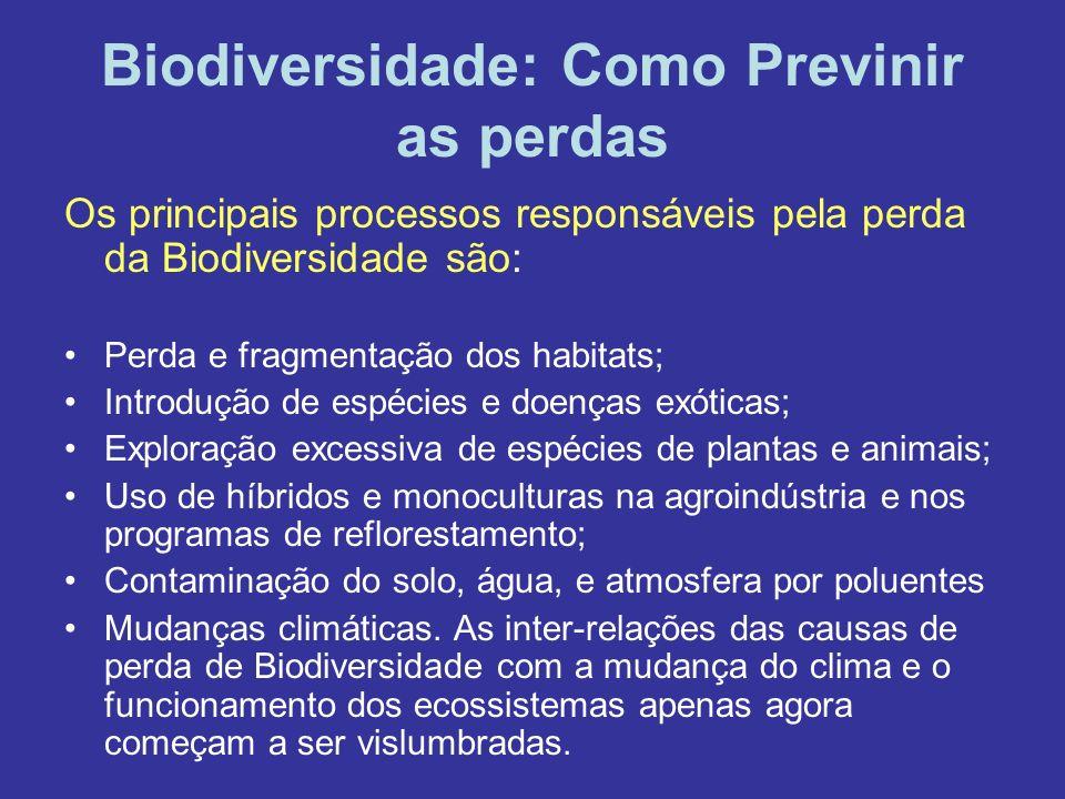 Biodiversidade: Como Previnir as perdas
