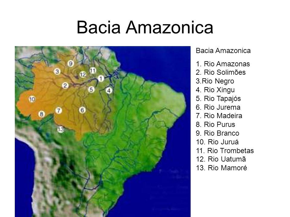 Bacia Amazonica Bacia Amazonica