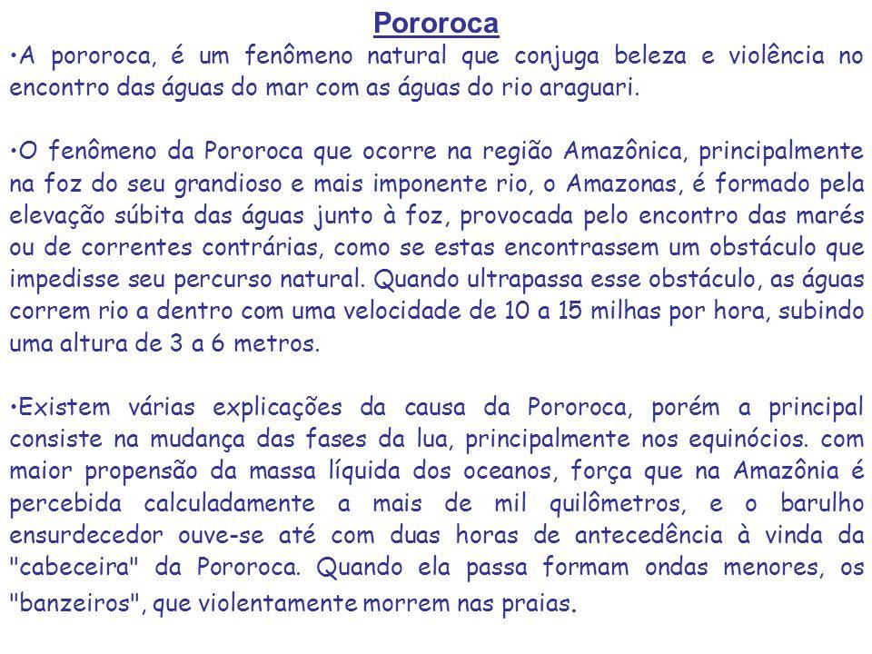 Pororoca A pororoca, é um fenômeno natural que conjuga beleza e violência no encontro das águas do mar com as águas do rio araguari.