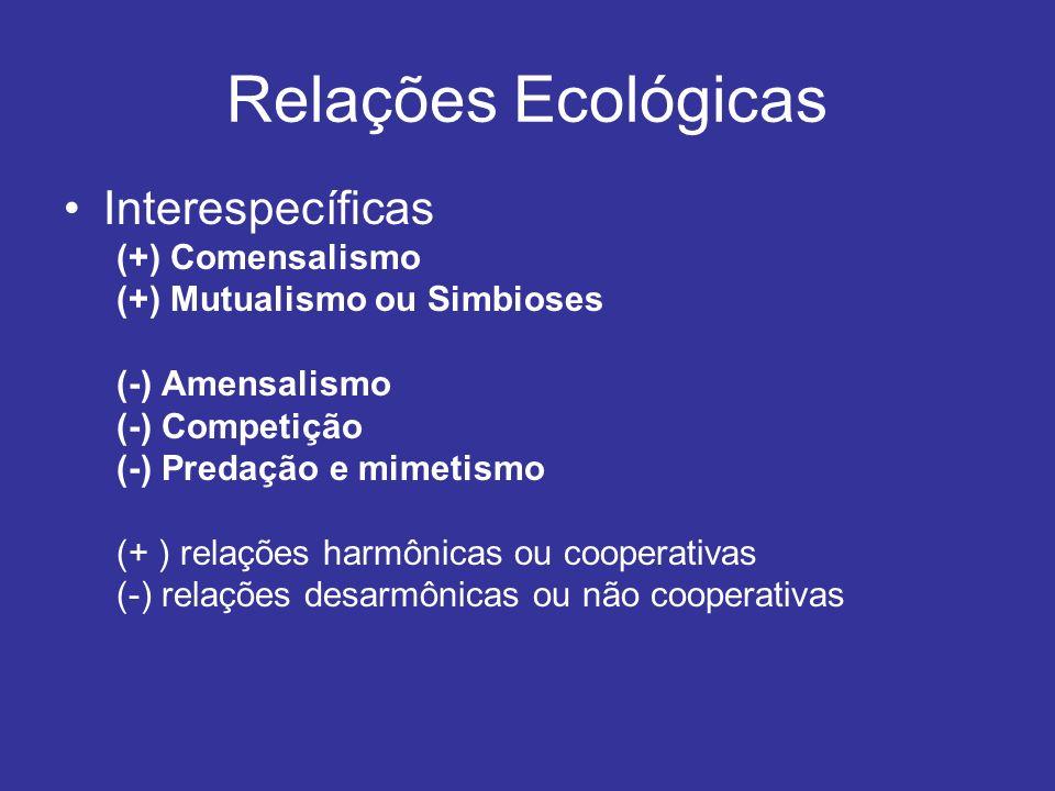 Relações Ecológicas Interespecíficas (+) Comensalismo