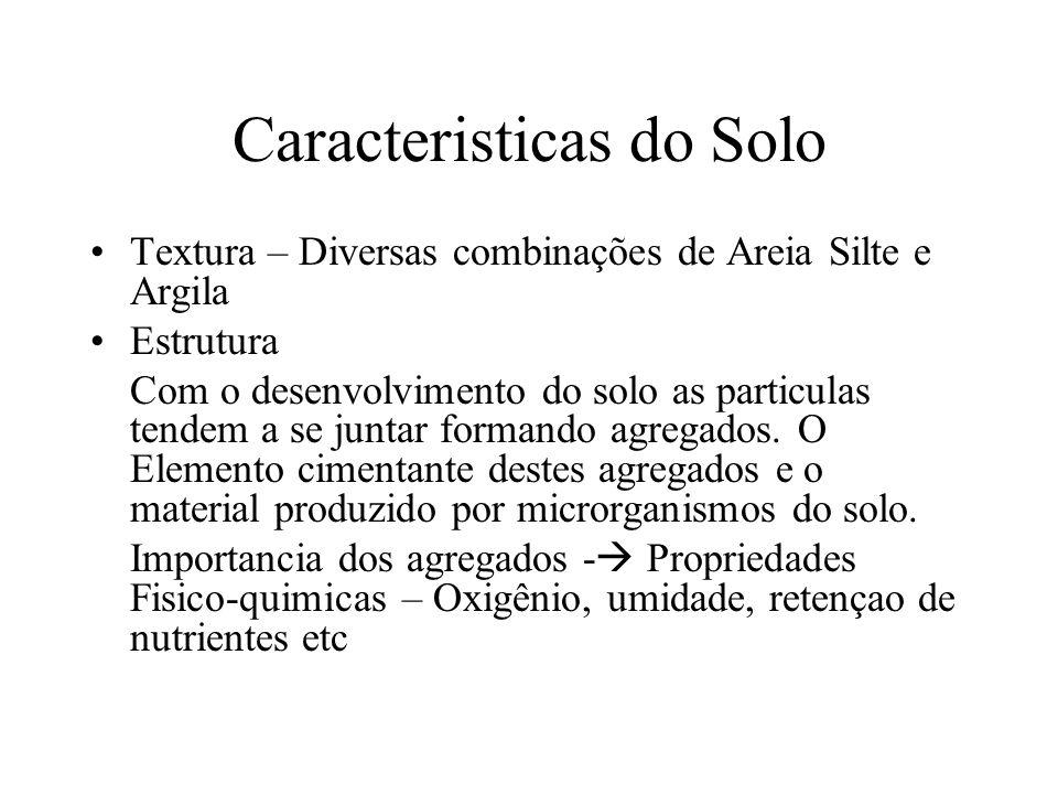 Caracteristicas do Solo