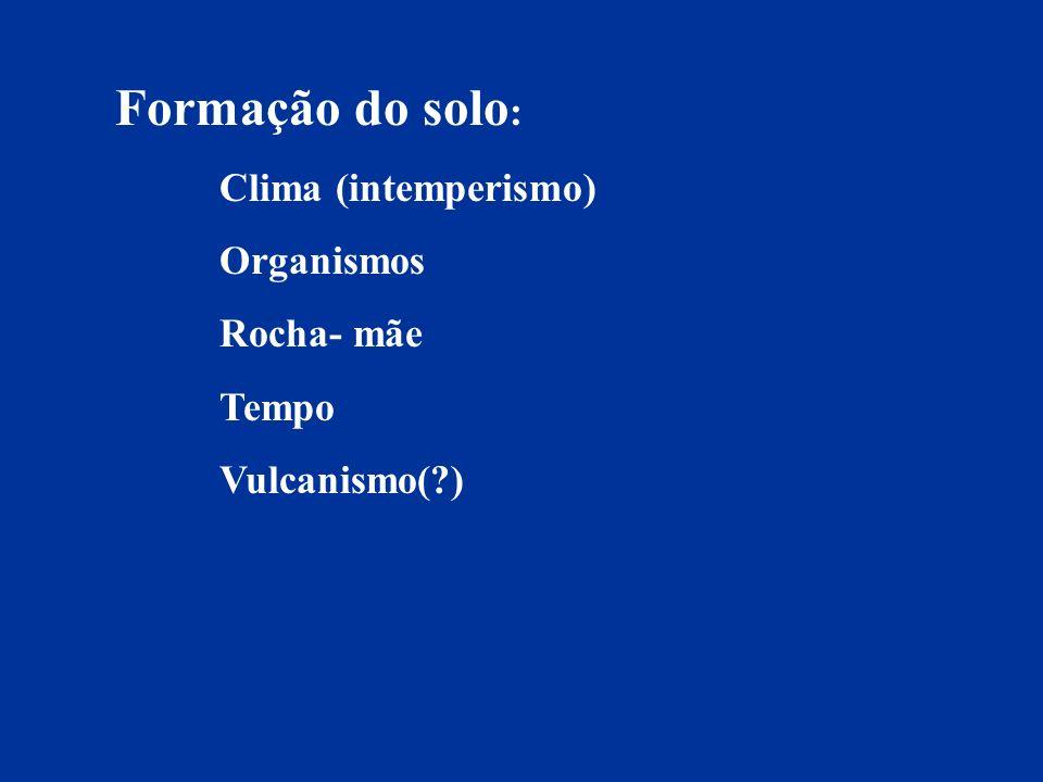 Formação do solo: Clima (intemperismo) Organismos Rocha- mãe Tempo