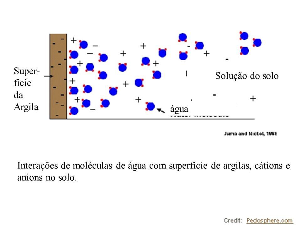 Super-ficie da Argila Solução do solo. água.
