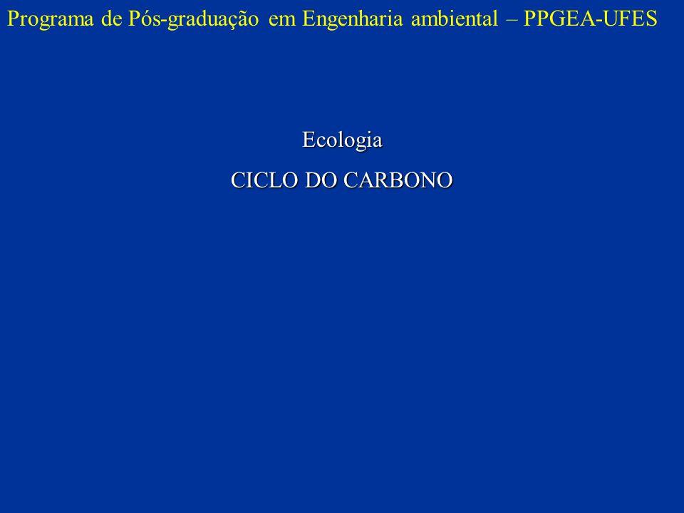 Programa de Pós-graduação em Engenharia ambiental – PPGEA-UFES