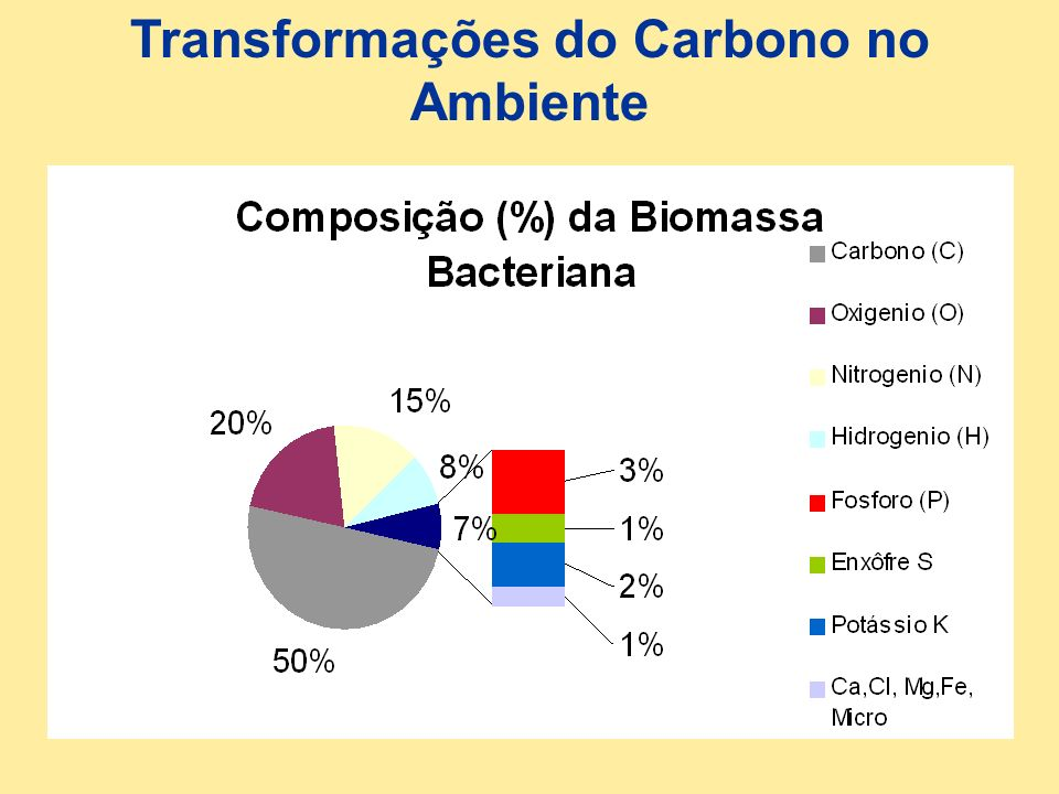 Transformações do Carbono no Ambiente