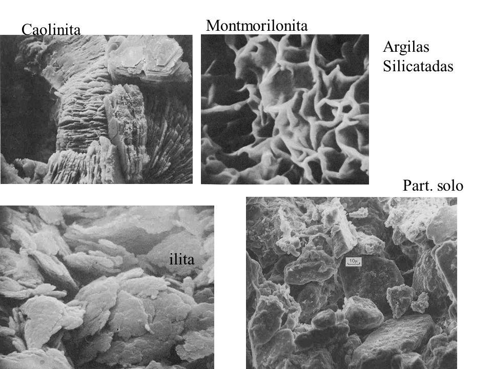 Montmorilonita Caolinita Argilas Silicatadas Part. solo ilita