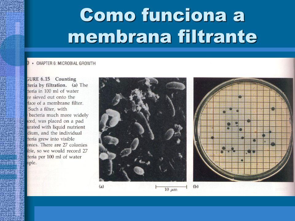 Como funciona a membrana filtrante