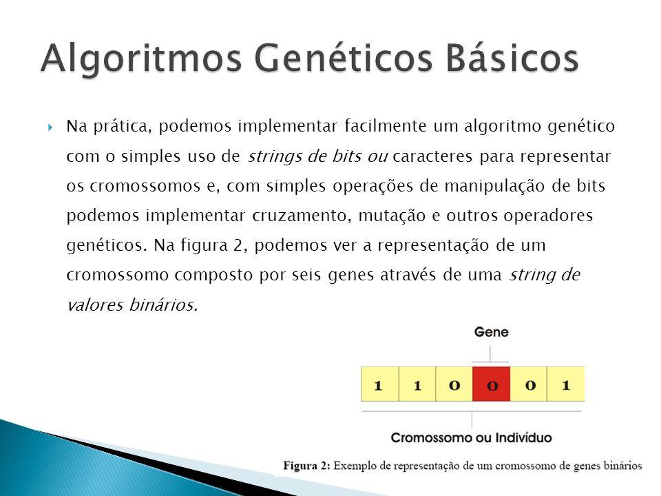 Algoritmos Genéticos Básicos