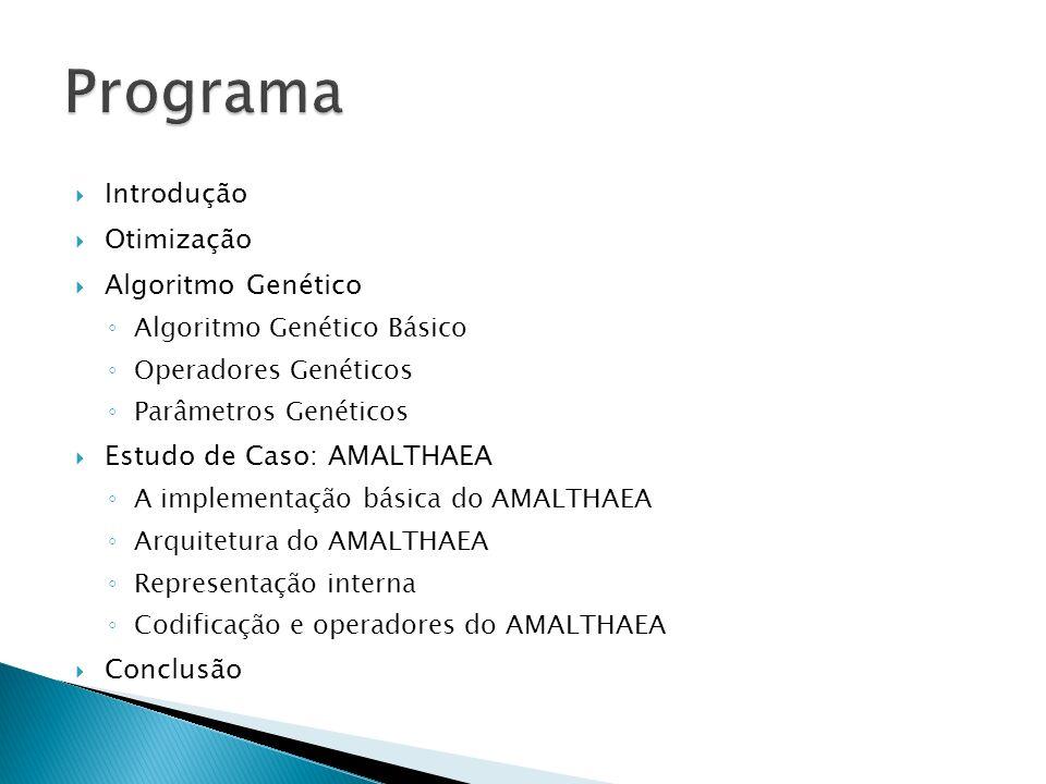 Programa Introdução Otimização Algoritmo Genético