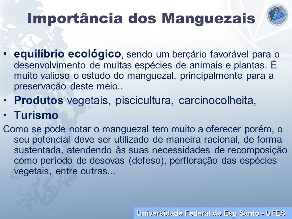 Importância dos Manguezais