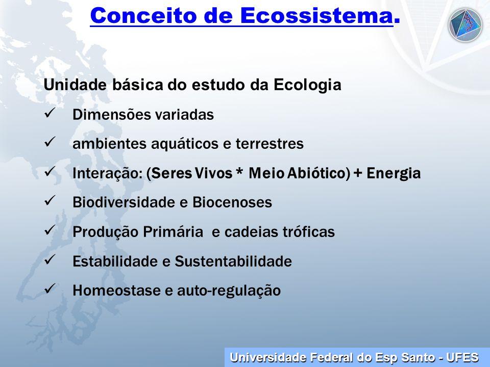 Conceito de Ecossistema.