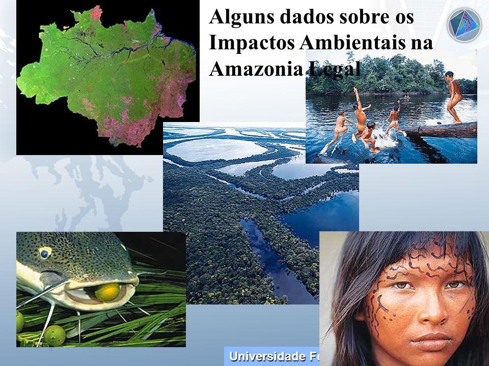 Alguns dados sobre os Impactos Ambientais na Amazonia Legal
