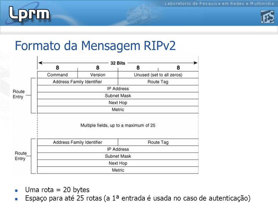 Formato da Mensagem RIPv2
