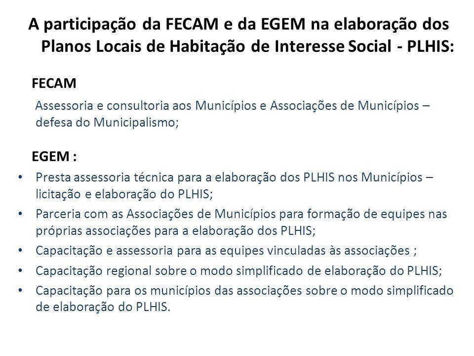 A participação da FECAM e da EGEM na elaboração dos Planos Locais de Habitação de Interesse Social - PLHIS: