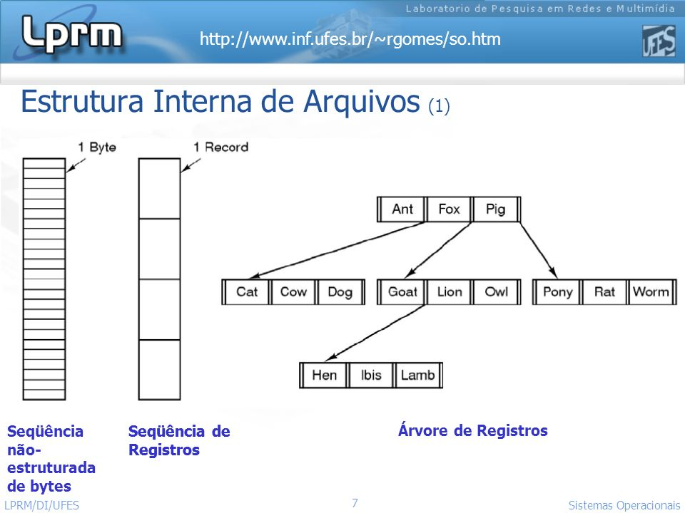 Estrutura Interna de Arquivos (1)