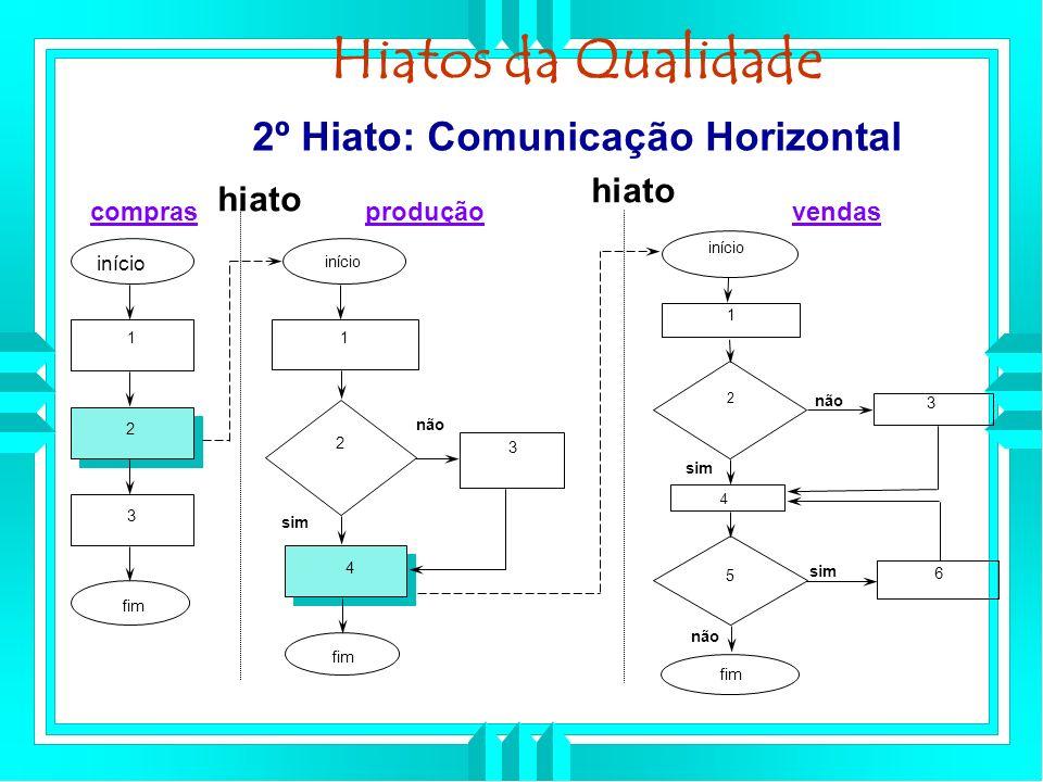 Hiatos da Qualidade 2º Hiato: Comunicação Horizontal hiato hiato