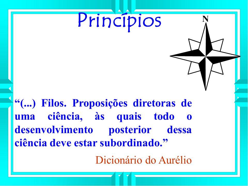 Princípios (...) Filos. Proposições diretoras de uma ciência, às quais todo o desenvolvimento posterior dessa ciência deve estar subordinado.