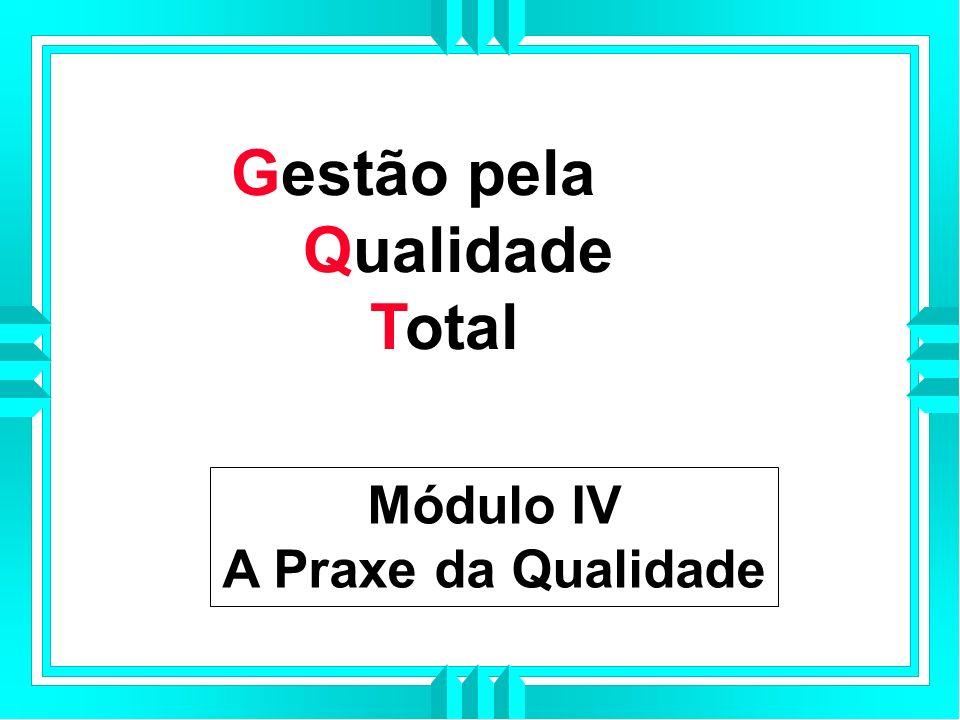 Gestão pela Qualidade Total Módulo IV A Praxe da Qualidade