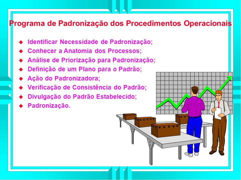Programa de Padronização dos Procedimentos Operacionais