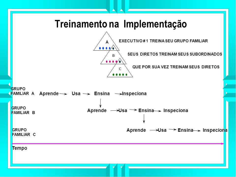 Treinamento na Implementação