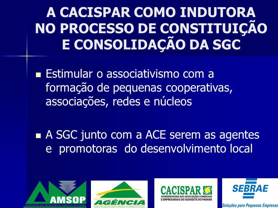 A CACISPAR COMO INDUTORA NO PROCESSO DE CONSTITUIÇÃO E CONSOLIDAÇÃO DA SGC