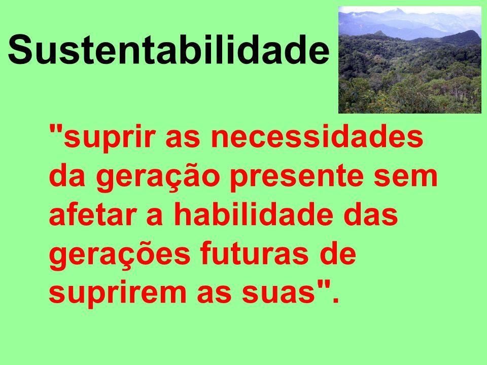 Sustentabilidade suprir as necessidades da geração presente sem afetar a habilidade das gerações futuras de suprirem as suas .