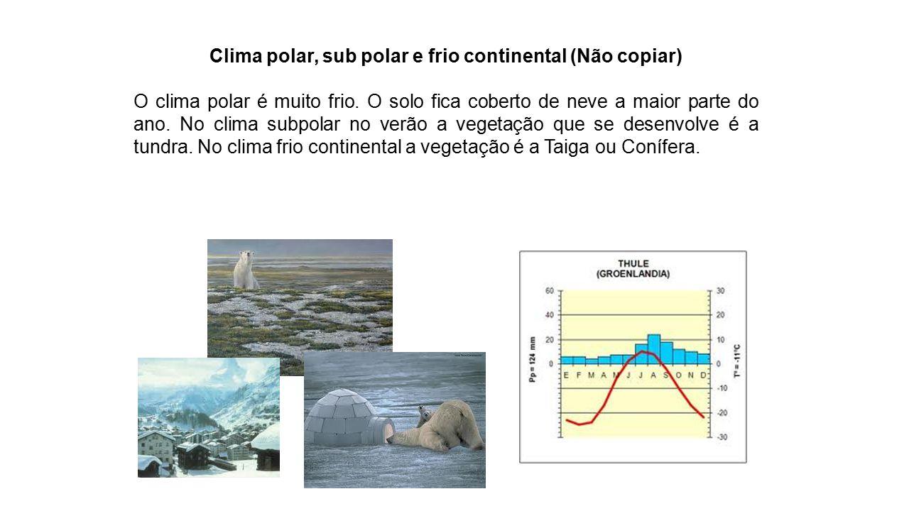 Clima polar, sub polar e frio continental (Não copiar)