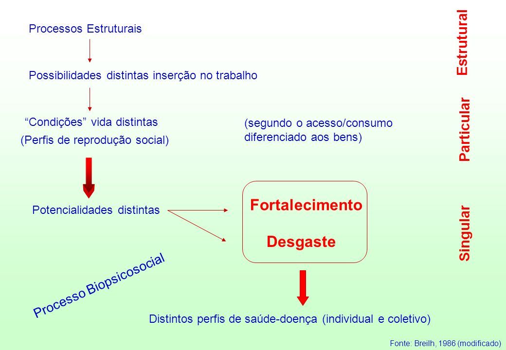 Fortalecimento Desgaste Estrutural Particular Singular