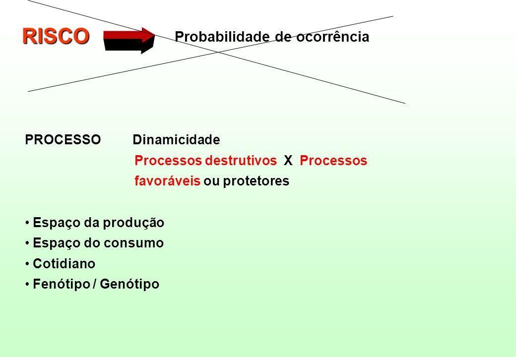 RISCO Probabilidade de ocorrência PROCESSO Dinamicidade